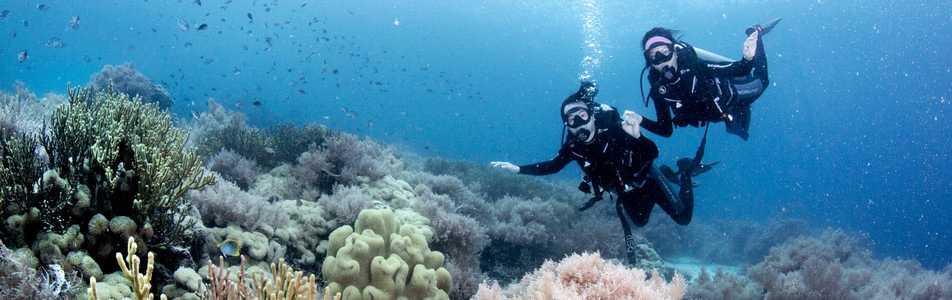 Bali Diving Site Menjangan Island