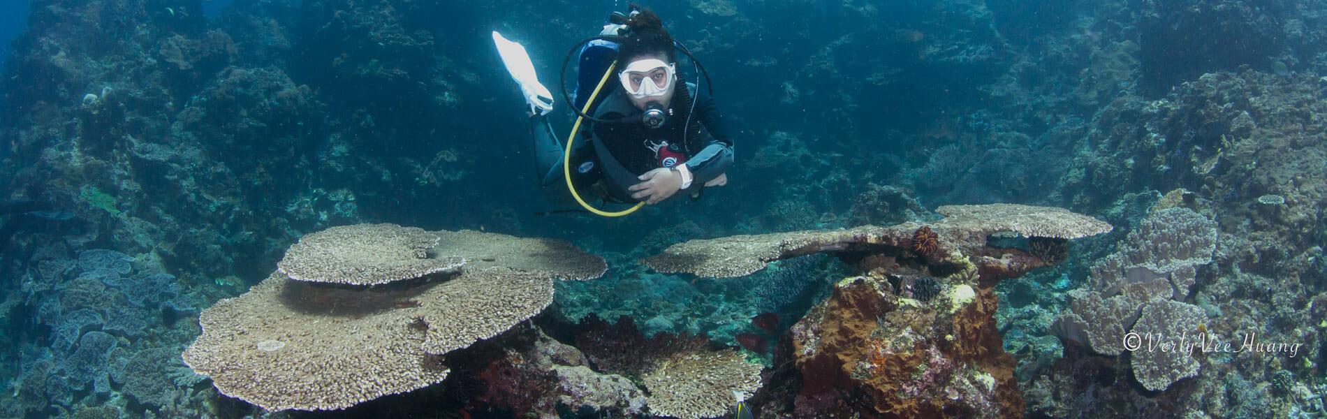 Diving in Bali - Gili Mimpang