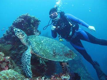 scuab diving Tulamben
