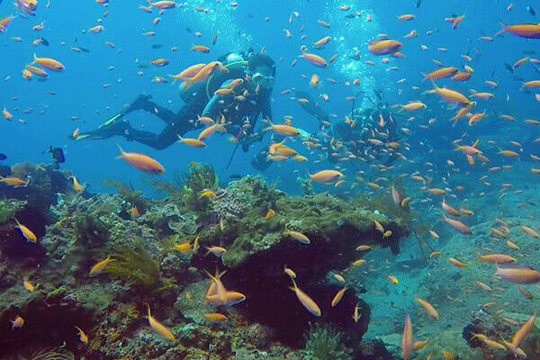 Padang bai dive sites, Padang Bai