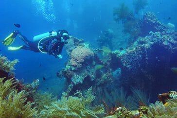 dive course Tulamben