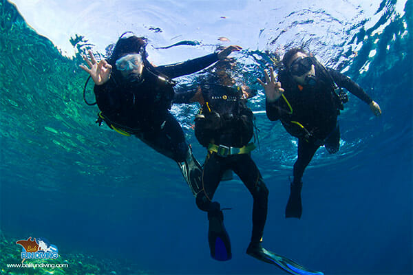 Open Water Course, Open Water Diver Course