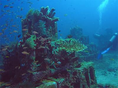 Artificial reef Bali