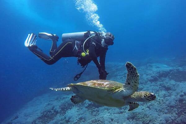 Learn Scuba Diving in Bali