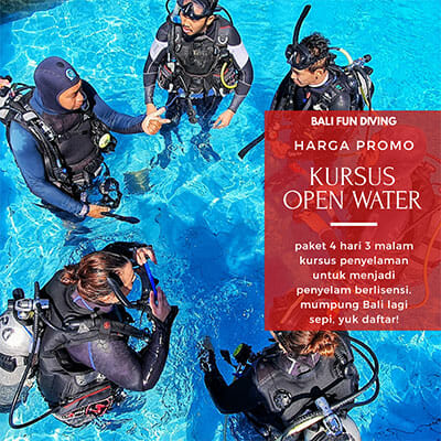 Open Water Course Promo Price